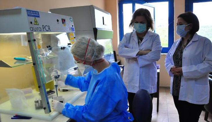 Sinovac aşısının bağışıklık yüzdesi belli oldu!
