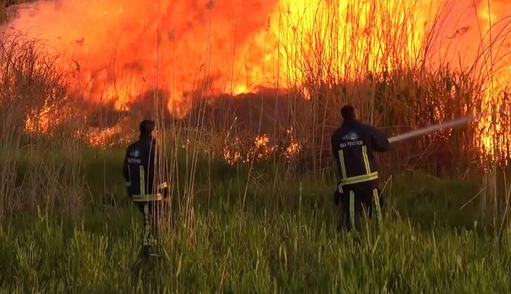 Van'da sazlık yangını, 2 saatte söndürüldü