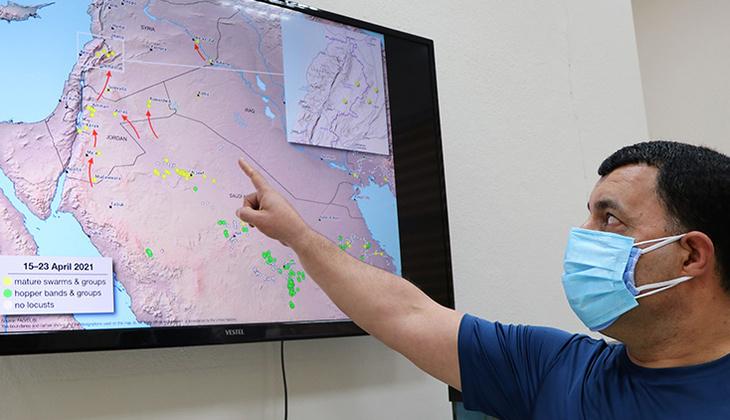 İstilacı çöl çekirgesi alarmı! Prof. Dr. Ali Satar haritada göstererek uyardı
