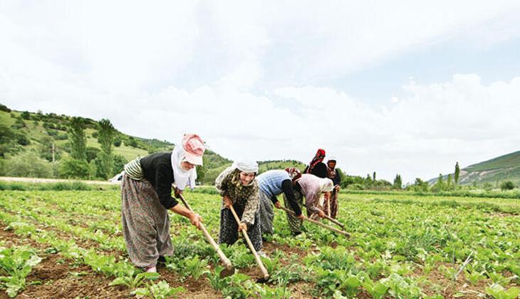 Çiftçi belgesi olan yasaktan muaf mı? Çiftçi belgesi nasıl alınır?
