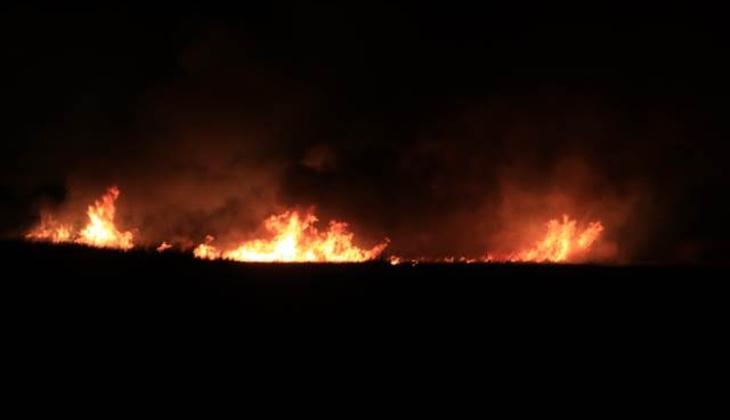 Erzincan'da kuş cenneti alev alev yanıyor!