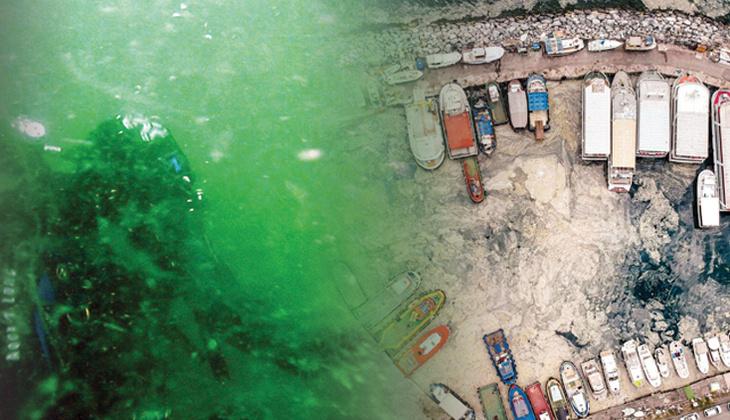 Deniz salyası kâbusu! Marmara can çekişiyor