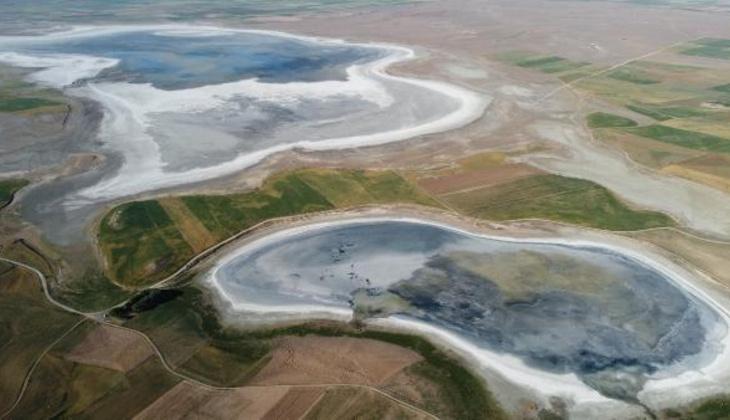 Flamingo cennetiydi, kurudu! '180 kuş türü vardı, şu anda bir tane bile yok'