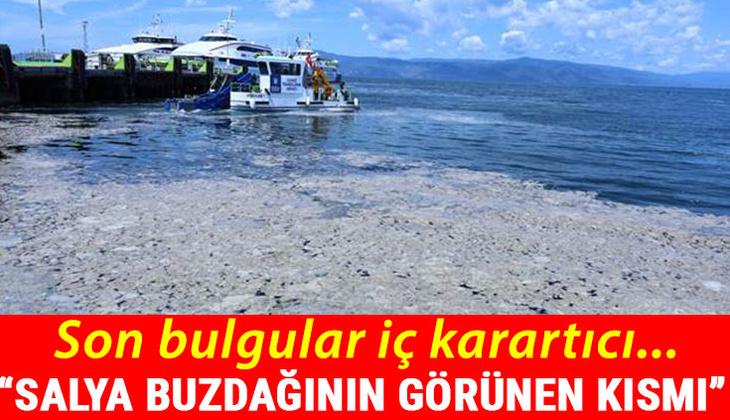 Marmara Denizi komada! Uyandırmak için...