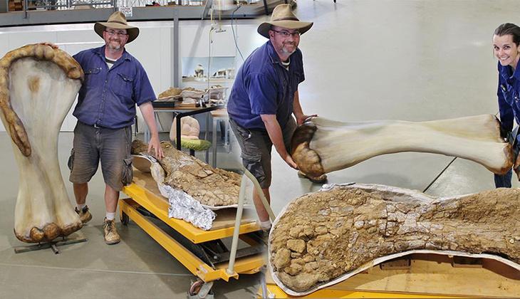 Avustralya'da bulundu... Dünyanın en büyüğü!