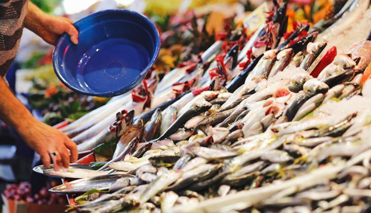 Musilajın balığa etkisi: Gönül rahatlığı ile yiyebilecek miyiz?