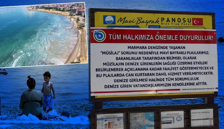 Mavi bayraklı plajda müsilaj uyarısı! Denize girerken bir daha düşünün
