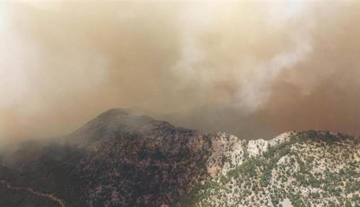 Son dakika... Mersin'de orman yangını! Orman Bölge Müdürü Kenan Akduman: Riskli bir yangınla karşı karşıyayız