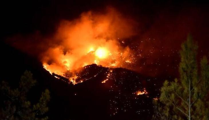 Son dakika haberi... Mersin Aydıncık'taki orman yangınında son durum! Müdahale sürüyor...