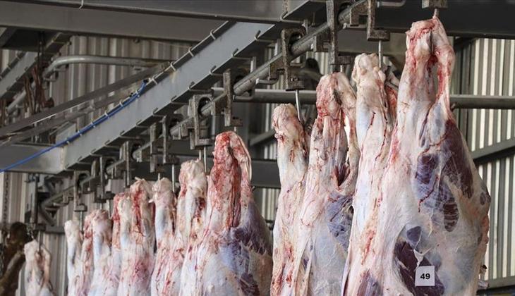 Kurban eti ne kadar dinlendirilmeli? :Kurban eti buzdolabına ne zaman koyulur?