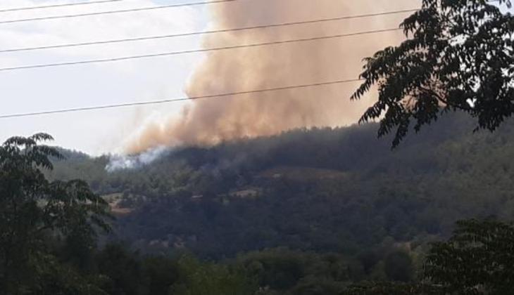 Son dakika... Osmaniye'de orman yangını