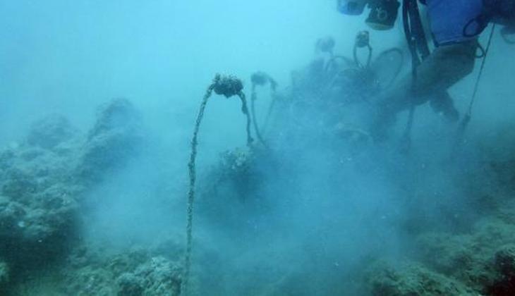 Tüpündeki oksijen bitinceye kadar hayalet ağ temizledi