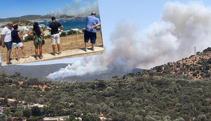Son dakika: Bodrum'da yeni yangın! Yerleşim alanına 150 metre uzaklıkta... Ev ve oteller boşaltılıyor!