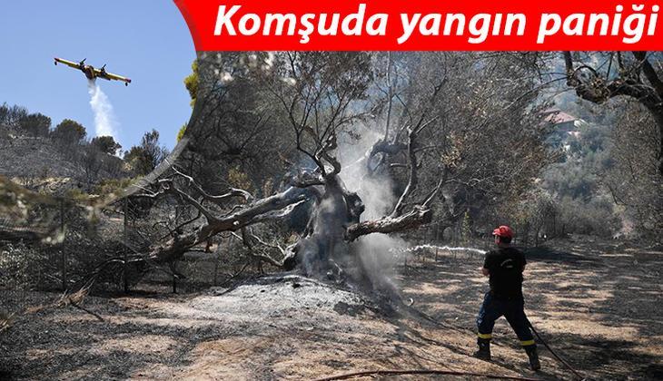Yunanistan'da orman yangınları sürüyor: 110 çocuğun bulunduğu tatil kampı tahliye edildi!
