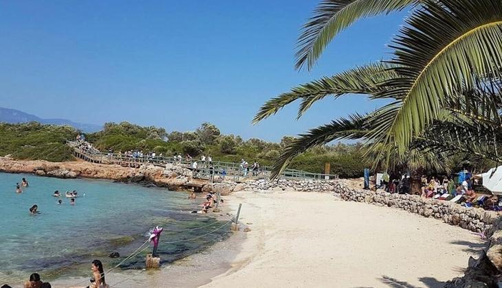Nereden nereye... Kleopatra Plajı'nda bir servet yatıyor! Yok olursa geri getirmek imkansız...