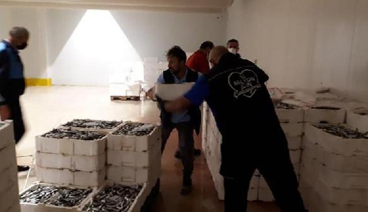 İstanbul'da 2 ton istavrite el konuldu!
