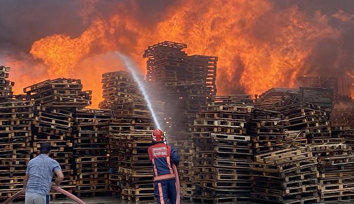 Son dakika: Sakarya'da yangın paniği
