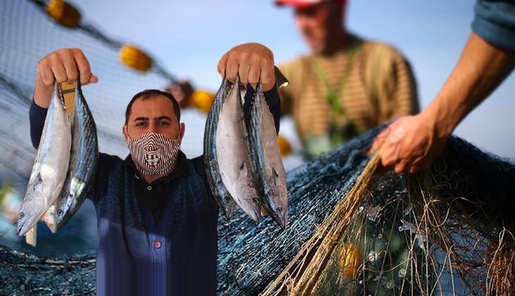 Balık sezonu müsilajın gölgesinde açıldı... 'Tehlike geçmedi balıksız kalabiliriz'