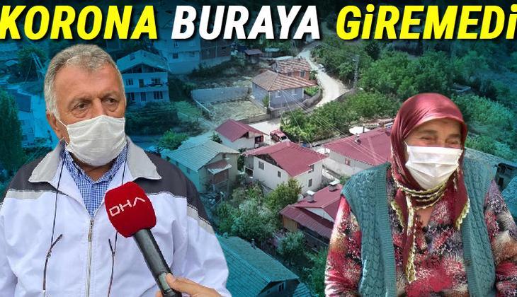 Amasya'nın Taşova ilçesinin Gökpınar köyünde hiç koronavirüs vakası görülmedi!