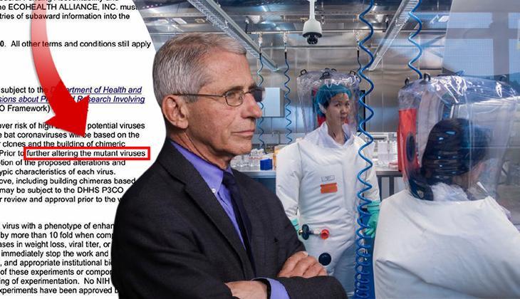 Son dakika: Merakla beklenen koronavirüs belgeleri yayınlandı: Fauci için flaş iddia!