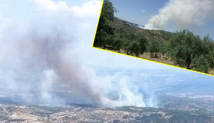 Son dakika! Manisa'da orman yangını! Çok sayıda ekip sevk edildi