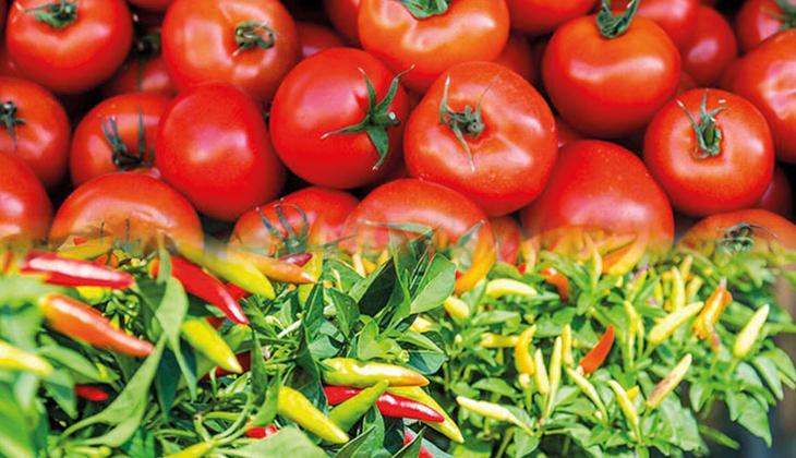 Son dakika haberi: Rusya'dan domates-biber ithalatı kararı