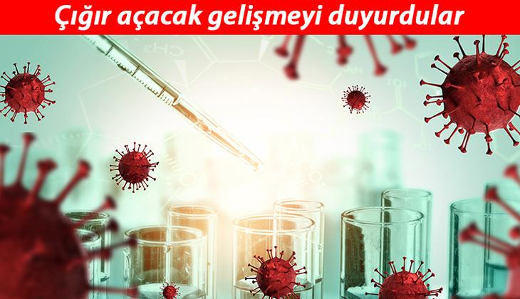 ABD'li bilim insanlarından çığır açacak buluş: Isıya dayanıklı Kovid-19 aşıları geliyor!