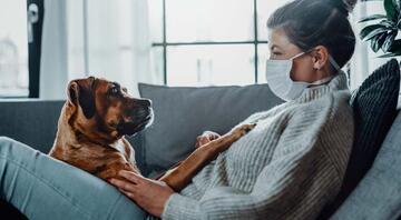 Evcil Hayvanları Olanların Uyması Gereken Covid-19 Tedbirleri