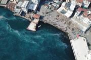 İstanbul Boğazında denizanası istilası