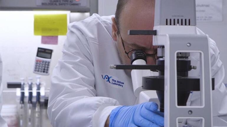 Yeni bir salgın alarmı Ebola virüsü geri mi dönüyor