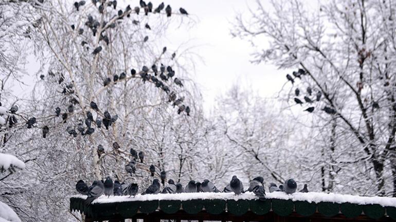 Nisanda kar sürprizi Beyaza büründü