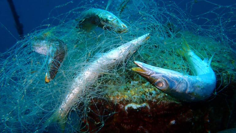 Denizlerimizin kâbusları bitmiyor Şimdi de hayalet ağlar...
