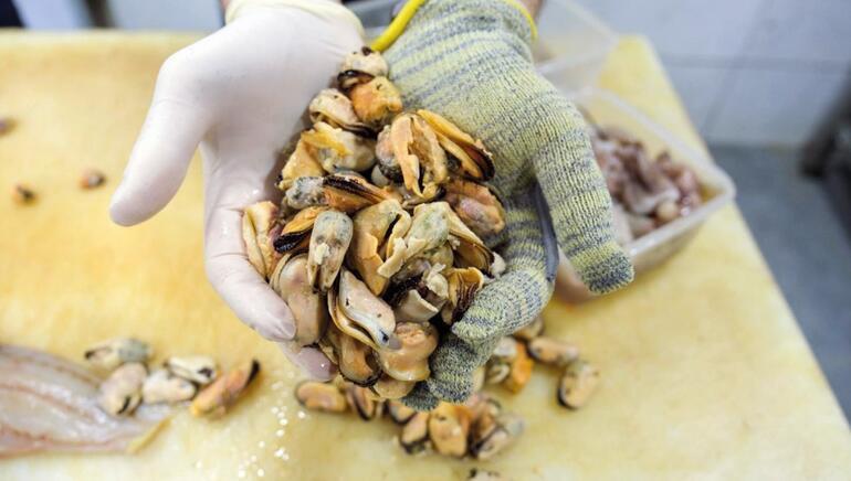 Ekmek Jaws'ın ağzında: Ortalama maaşları 5 bin 500 lira