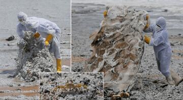 Sri Lanka plajları plastik kar ile kaplandı