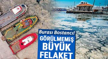 Deniz salyası sonrasında Marmara'nın tükenişi Ölü deniz haline geldi Çok az vakti var