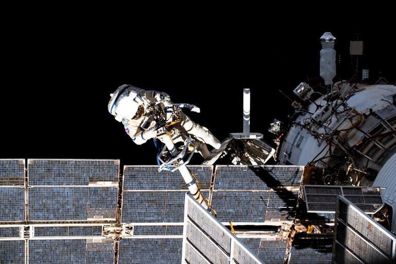 NASA ve Space Xten ses getirecek proje: Uzaya taze meyve, deniz canlısı ve pamuk fidesi yolladılar