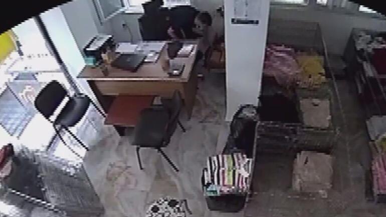 Son dakika: İstanbulda bir ilçenin kâbusu oldu Hırsızlık yapmadan önce bir keyif yapıyor