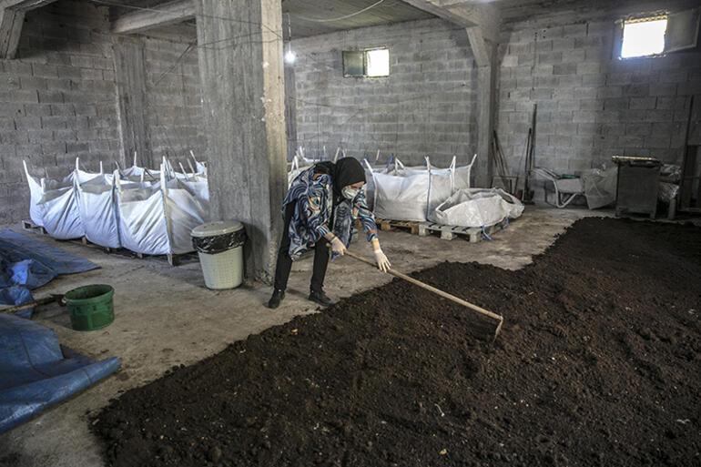 Mezun olur olmaz evinin bodrumunda beslemeye başladı Yıllık 12 bin ton üretiyor