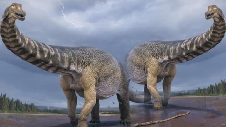 Son dakika haberler: Avustralyada 92 milyon yıllık dinozor fosili bulundu Şu ana kadar en büyüğü