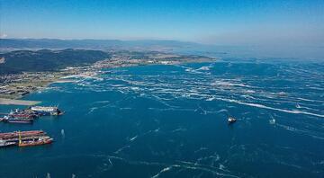 Müsilaj nedir, neden olur İşte Marmara Denizi'ndeki müsilajda son durum