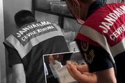 İstanbul'da hayvan kaçakçılığı operasyonu