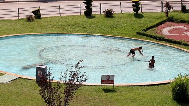 Canlarını hiçe sayıp süs havuzuna atladılar