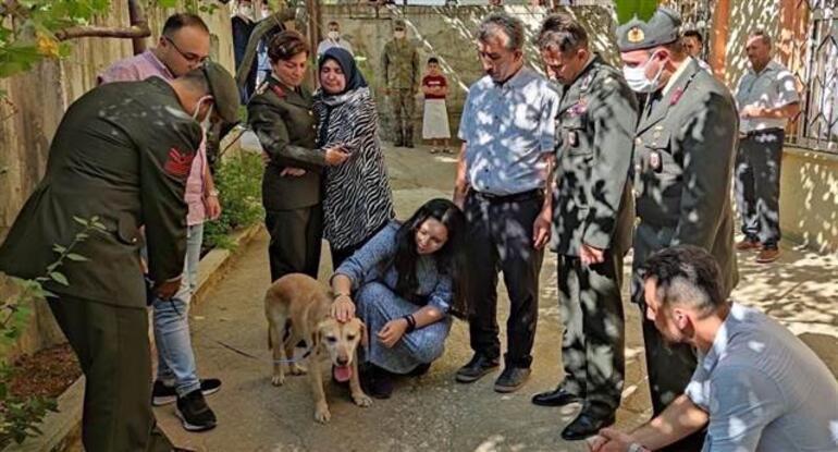 Şehit onbaşı Ahmet Akdalın köpeği Atmaca şehidin ailesine verildi... Gözyaşlarına boğuldular