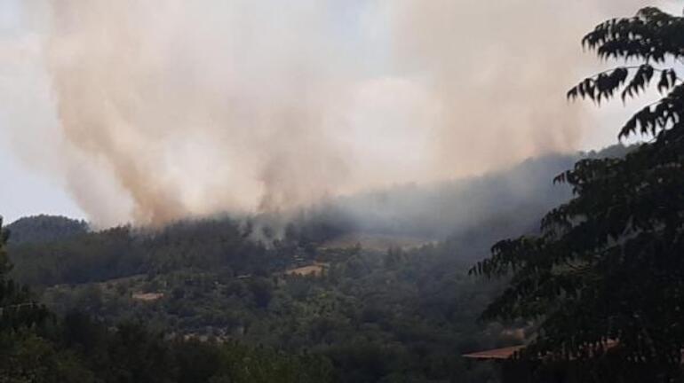 Son dakika... Osmaniyede orman yangını