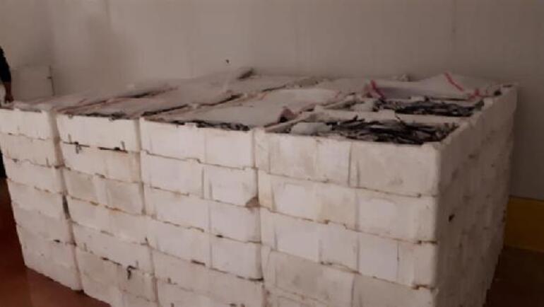 İstanbulda 2 ton istavrite el konuldu
