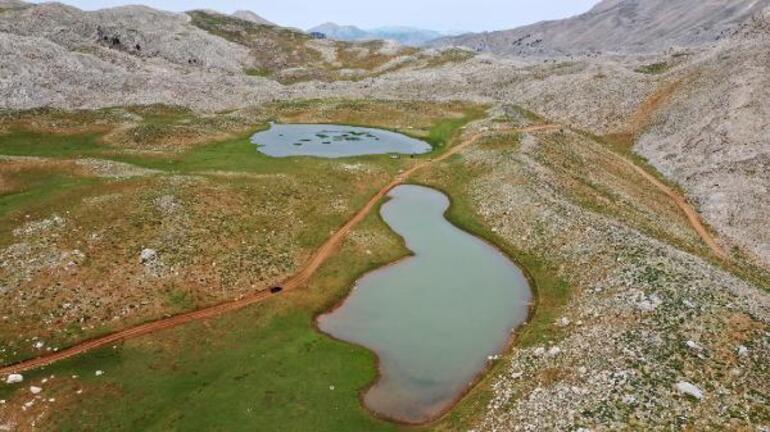 İkiz Göller tamamıyla kurudu... Göl yatakları tarlaya döndü